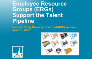 Employee Resource Groups (ERGs)  Support the Talent Pipeline